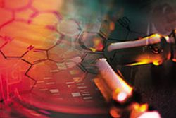 E&L Risk Assessment for Biologic Drug Products