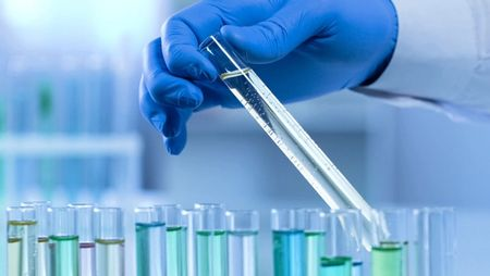 Toxicology: Ensuring Drugs are Safe for People. Image: MOTORTION - STOCK.ADOBE.COM