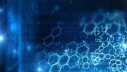 Understanding Concomitant Components in Pharmaceutical Excipients