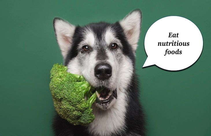 Eat nutritious foods