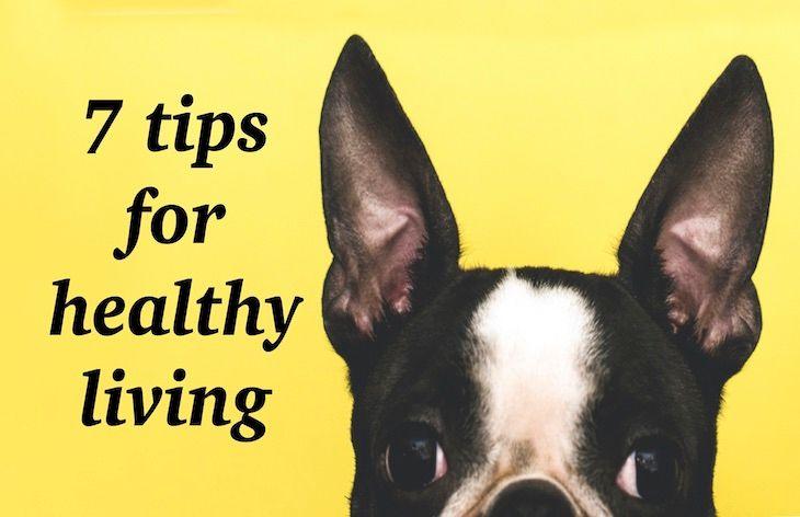 7 tips for healthier living