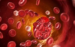 Rivaroxaban Noninferior to Warfarin in AFib Patients w/ Bioprosthetic Mitral Valves