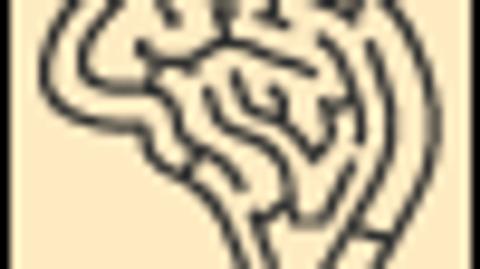 Chronic Disease Self-Management Programs in Psychiatry