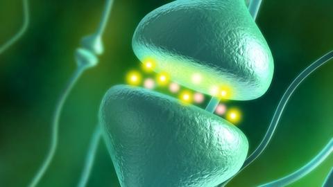 Anti-NMDA Receptor Encephalitis: Diagnostic Issues for Psychiatrists