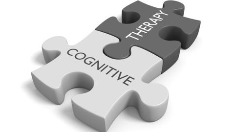 Brief Cognitive Behavioral Therapy Interventions for Psychosis