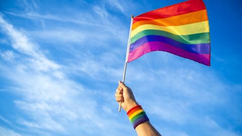 LGBTQ Mental Health: What Every Clinician Needs to Know