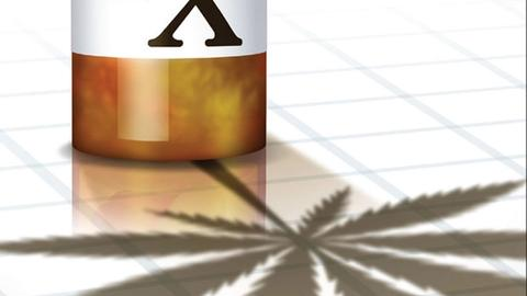 Medical Marijuana for Pain: What the Evidence Shows