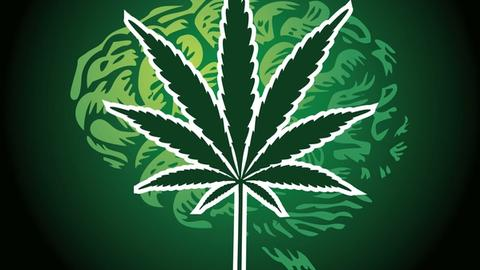 Treatment for Cannabis Use Disorders: A Case Report