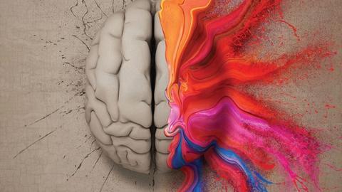 Neuroanatomy and the 21st Century Psychiatrist