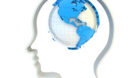 Management of Mild Traumatic Brain Injury