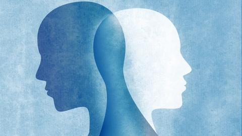 Borderpolar: Patients with Borderline Personality Disorder and Bipolar Disorder