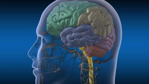 Autoimmune Encephalitis: What Psychiatrists Need to Know
