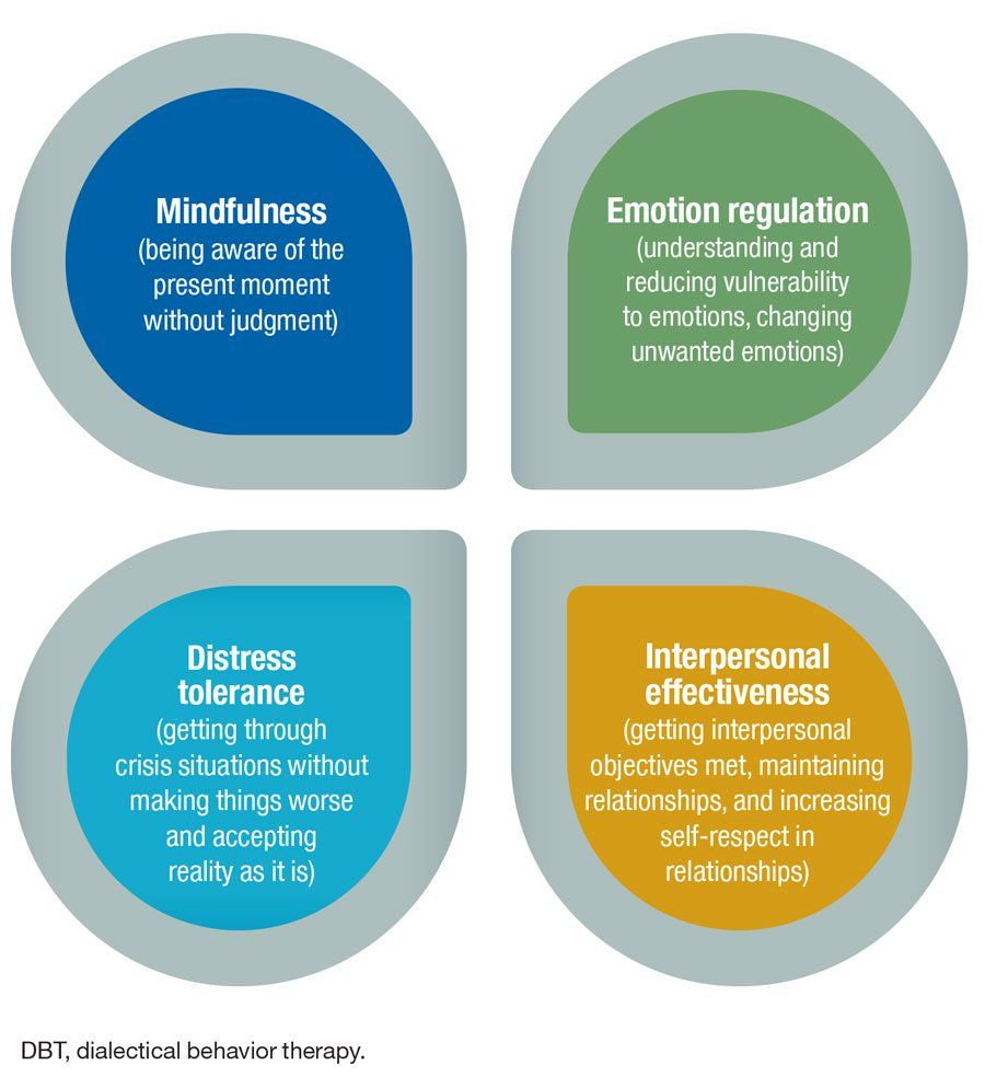 Adhddialectical Behavioral Training