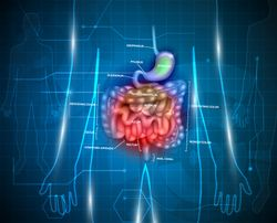 Here's What You May Not Know about IBD and Arthritis