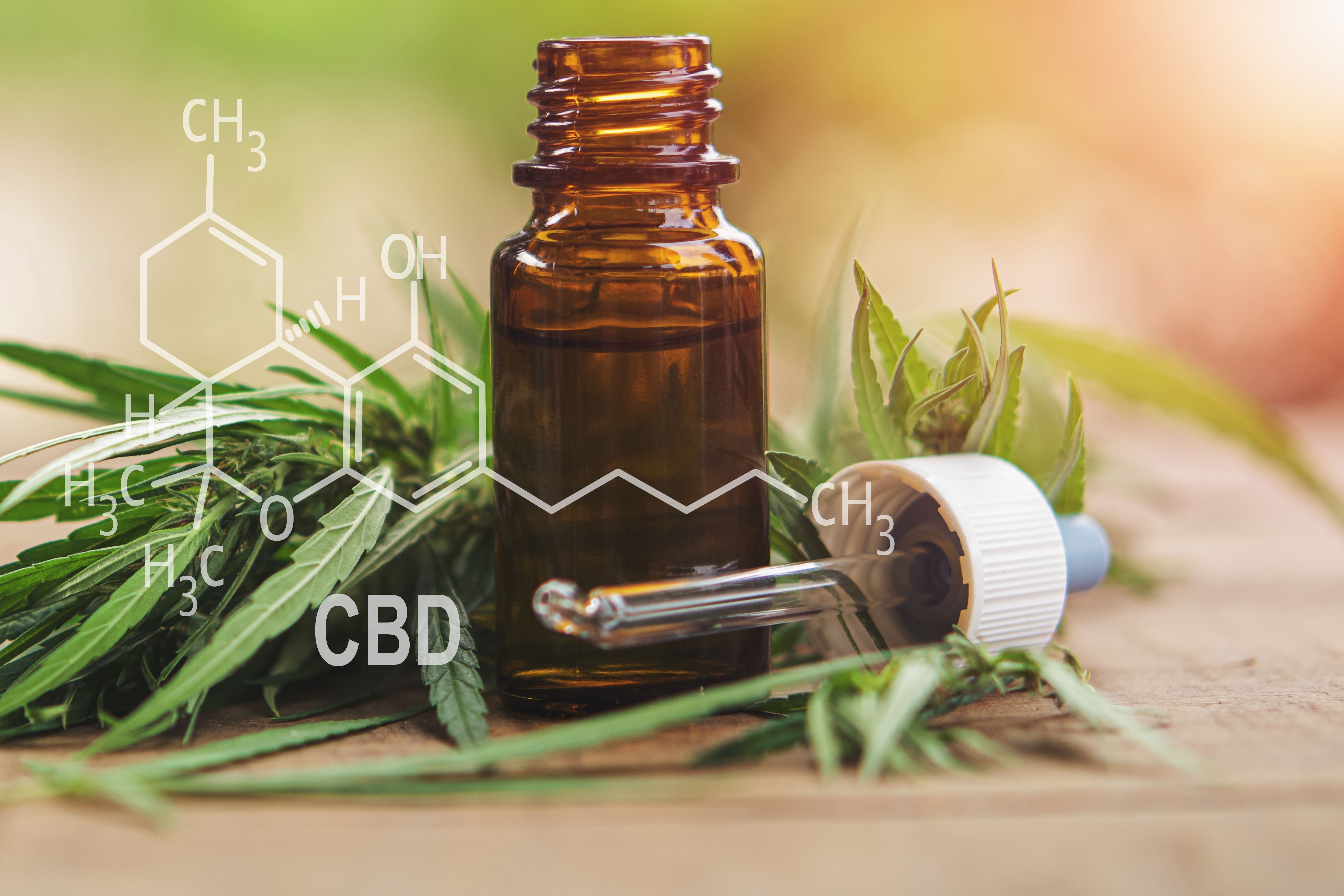 First-Ever Guidance on CBD Use for Arthritic Pain