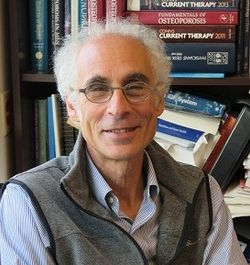 Q&A:  Dr. Clifford J. Rosen on Obesity-Related Osteoarthritis