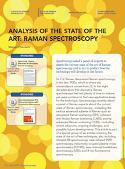 Analysis of the State of the Art: Raman Spectroscopy