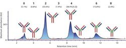 2D-LC–MS for the Analysis of Monoclonal Antibodies and Antibody–Drug Conjugates in a Regulated Environment