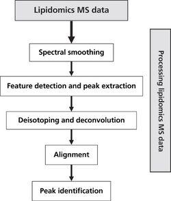 Mass Spectrometry in Analytical Lipidomics