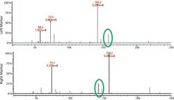 Comparing Single Quadrupole with Triple Quadrupole GC–MS-Based Metabolomics