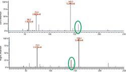Comparing Single Quadrupole with Triple Quadrupole GC–MS-Based Metabolomics