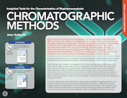 Analytical Tools for the Characterization of Biopharmaceuticals: Chromatographic Methods