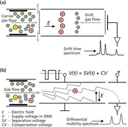 Ion Mobility Spectrometers as Chromatographic Detectors