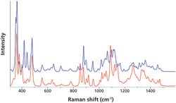 Raman Spectroscopy of Pharmaceutical Ingredients in a Humidity-Controlled Atmosphere