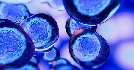 Blue cells against a purplish background