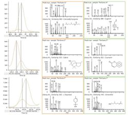 A Fast Method for Targeted Allergen Screening and Nontargeted Characterization for Personal Care Products