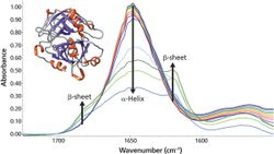 Simple Method for Monitoring Protein Secondary Structure During Thermal Unfolding and Aggregation
