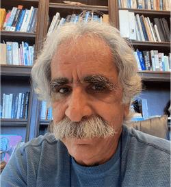 Recording the Raman Spectrum of a Single Molecule