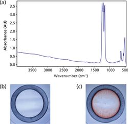 A Rapid FT-IR-based Method for Monitoring Detergent Removal from Biological Samples