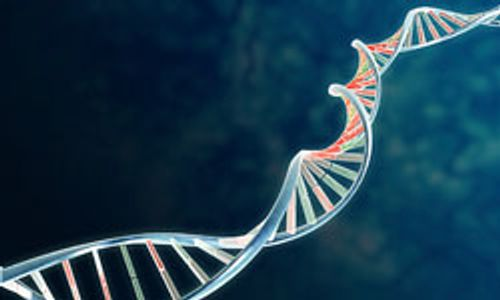NCI Releases Largest-Ever Dataset of Genetic Variants in Cell Lines for Nine Types of Cancer