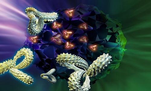 A Little STING May Enhance the Immune System Against Cancer
