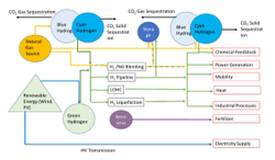 Webinar discusses carbon capture and the hydrogen economy