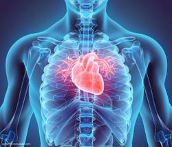 Prostate cancer and CV risk: The heart of the matter