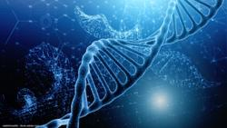 NCCN recommends Decipher genomic test to guide post-RP treatment in high-risk patients