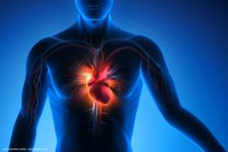 Alpha blockers and 5-alpha reductase inhibitors raise cardiac failure risk