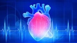 Heart disease risk higher in GU cancer survivors