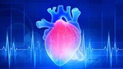 Heart disease risk higher in GU cancer survivors