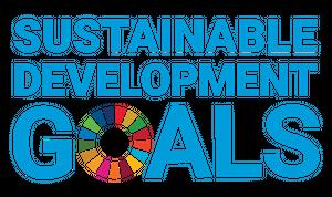 Que sont les Sustainable development goals?