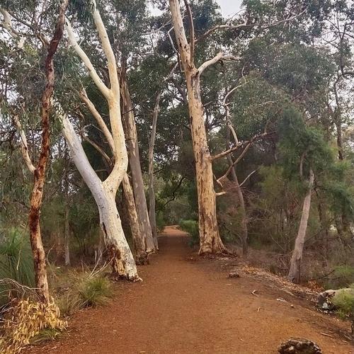 Kalamunda, Western Australia – Emma Whetnall