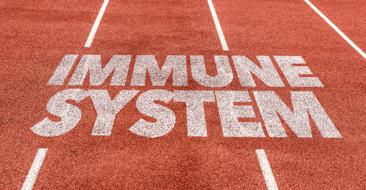 Supporting Your Immune System