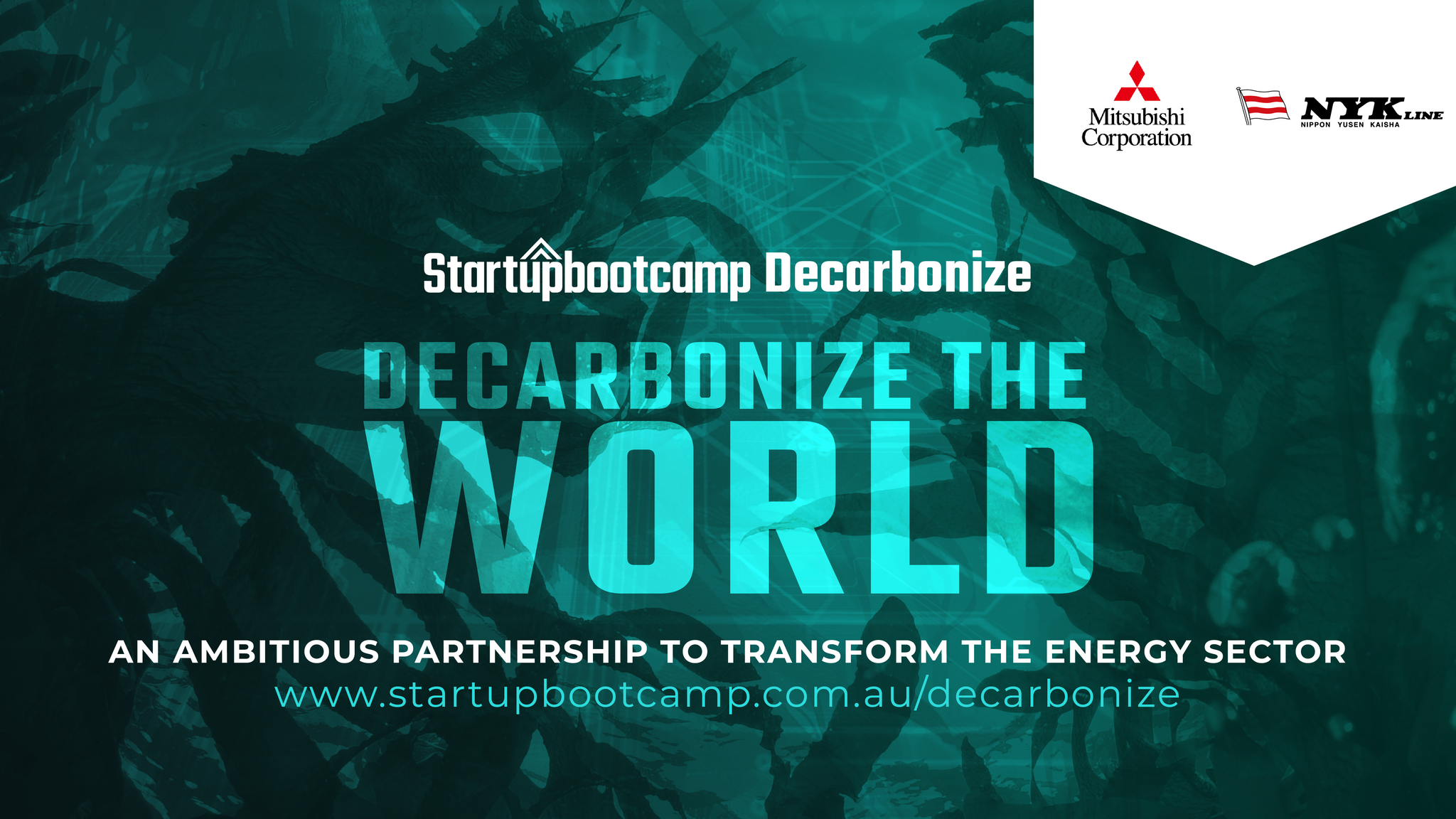 Startupbootcamp Decarbonize: An Ambitious Partnership to Transform the Energy Sector
