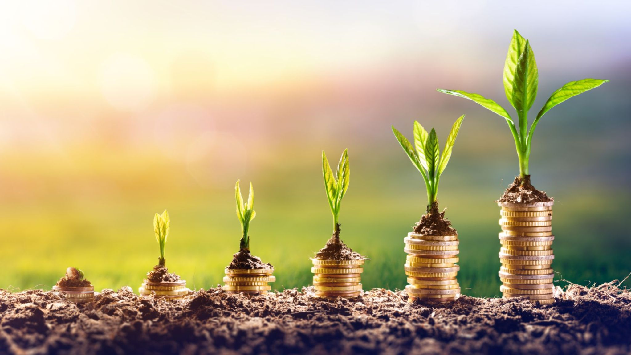 COVID-19 Super Scheme - What the Changing Landscape of Superannuation Means for Fintechs