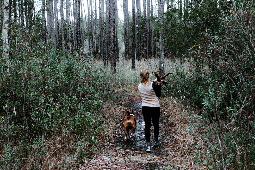 A woman walks through a forest carrying firewood with a dog to her left.