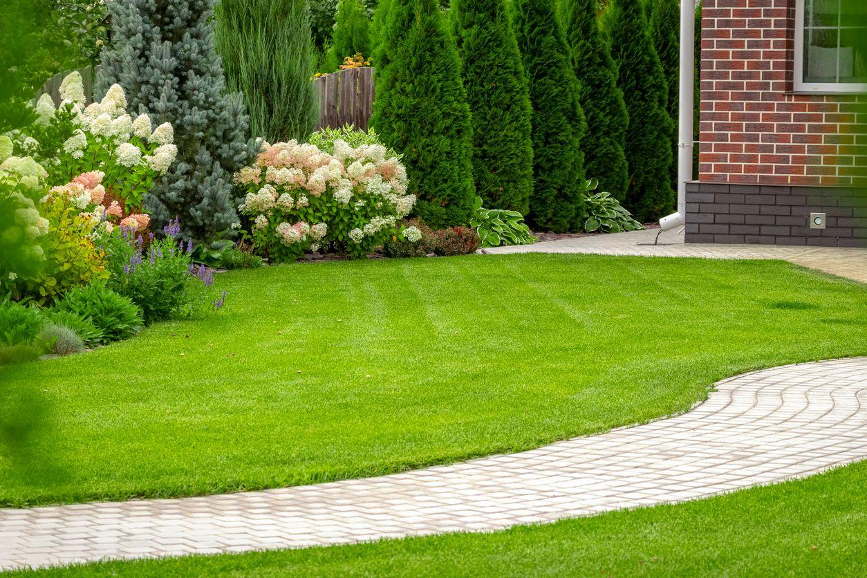 image_Lawn Smarts: Yard Audit