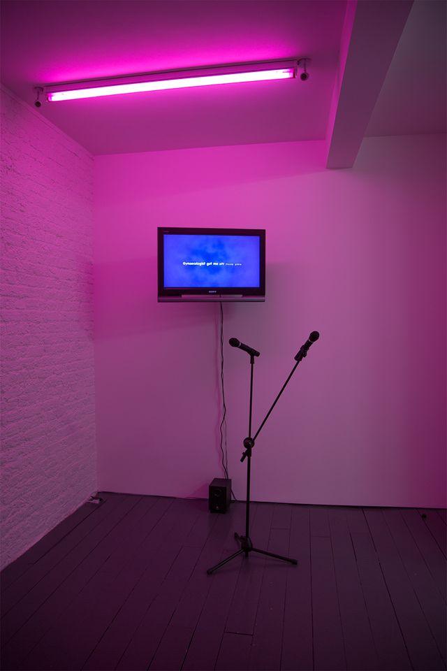 Display of Karaoke Greatest Hits Sera Tansel DVD, 2015. Screen, microphone.