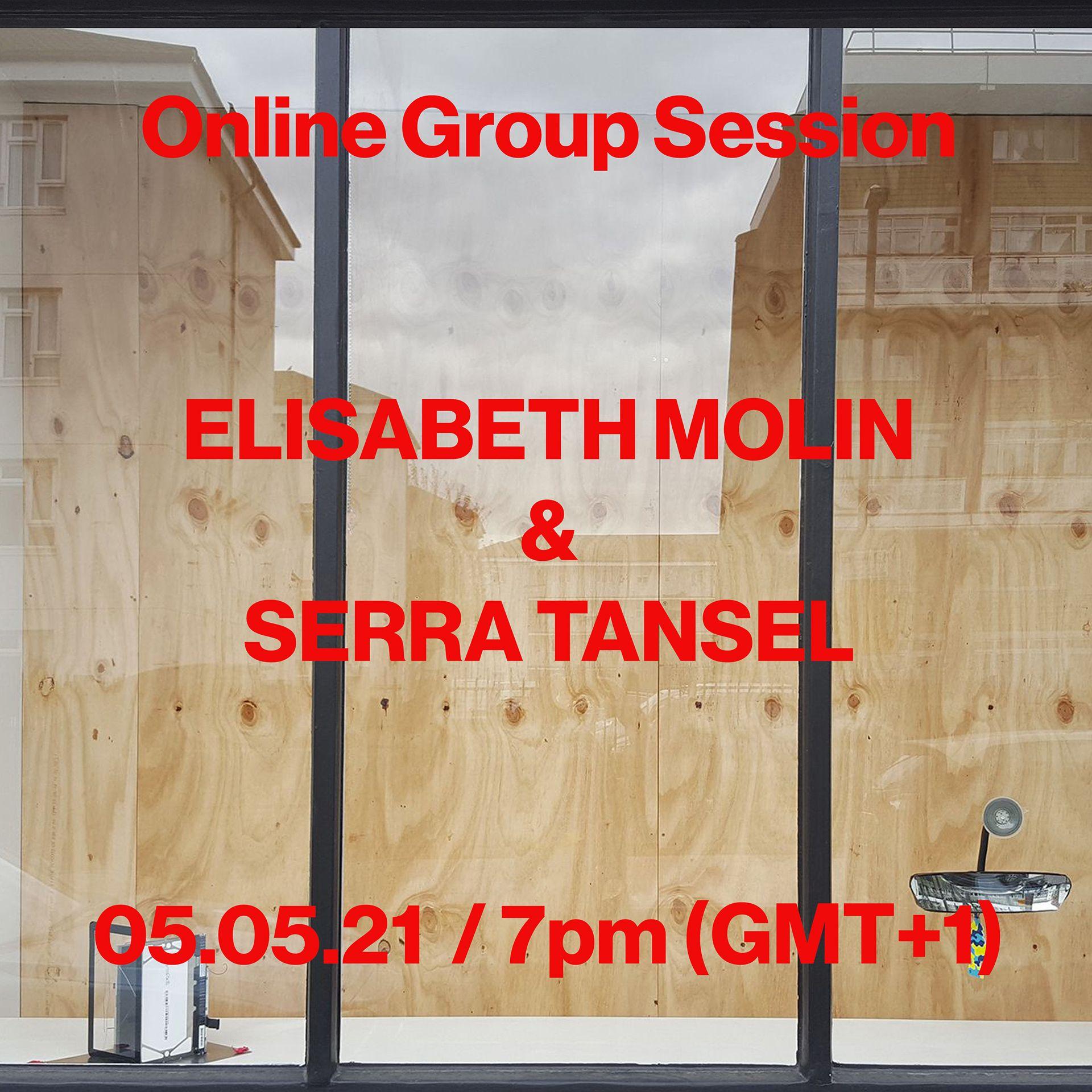 Online Group Session, Elisabeth Molin, Serra Tansel
